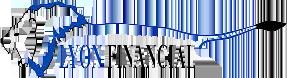 lion financial logo